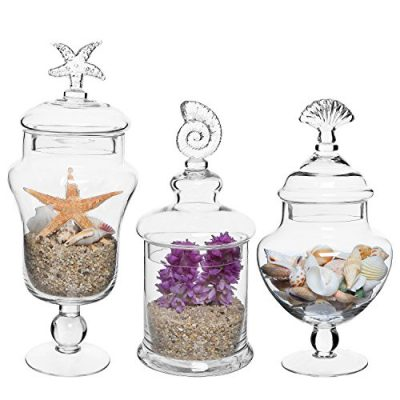 MyGift Set of 3 Seashell Handle Clear Glass Apothecary Jars/Food Storage